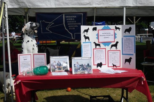 Community Awareness Table 2011